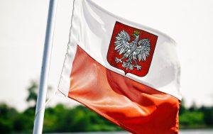 marsz niepodległości 2018 zdjęcie flagi z godlem państwowym